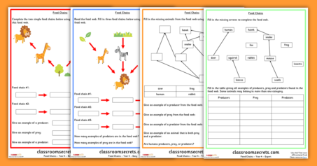 Year 4 Food Chains and Food Webs Science Worksheets