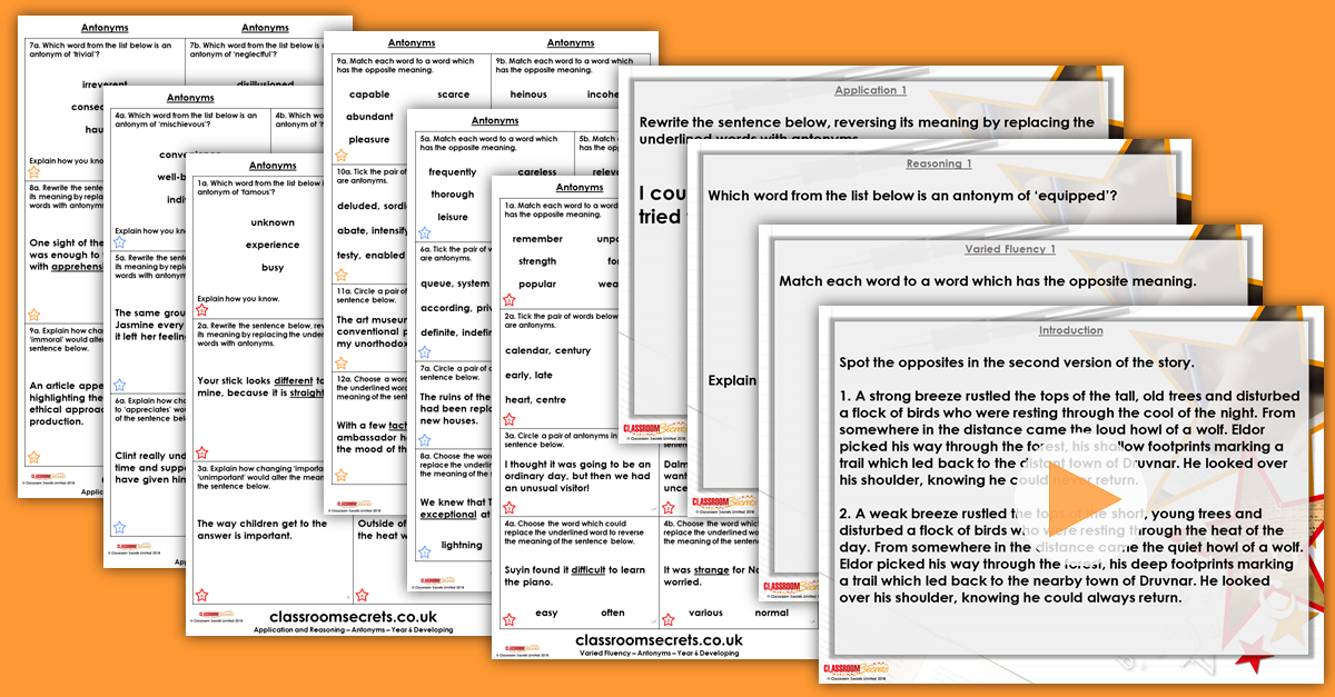 Antonyms Year 6 Synonyms and Antonyms Resource Pack | Classroom Secrets